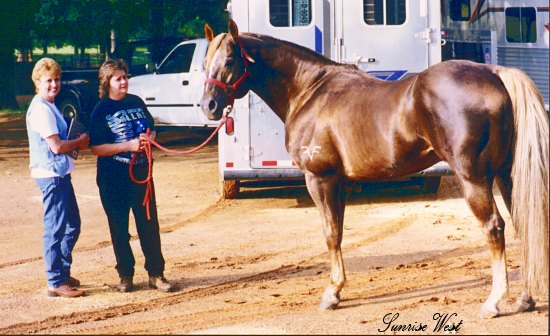 Fire Water Flit Barrel Horse Sire, with Pat Smith and Vickie Adams
