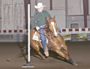 Sumbunnydunnickbar, barrel racing and pole bending mare