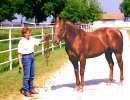 Pat Smith with On The Money Red, May 11, 1998 at Victory Farms, Ada, OK