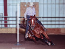 SumbunnysPerky, pole bending and barrel racing mare